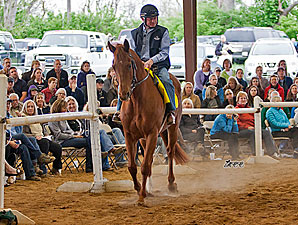 500 Attend Thoroughbreds For All Event