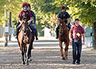 Arlington Million Coverage 2014