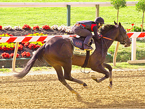 Tiger Walk, Zetterholm Work Toward Preakness