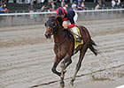 Tonalist Keeps Clement's Belmont Dream Alive