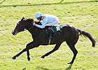 Toormore: Another Good Horse for Arakan