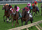 Trade Storm Reigns With Woodbine Mile Upset