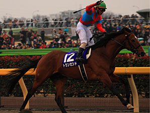 Transcend Popular Winner of February Stakes