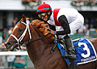 Trappe Shot Retired, to Stand at Claiborne