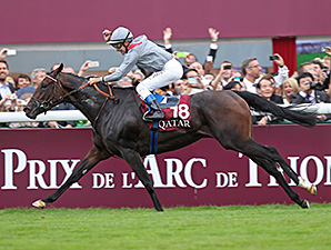 Filly Treve Scores in Breathtaking Arc Romp