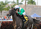 Tuttipaesi Aims For Second U.S. Stakes Win