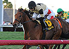 Twilight Eclipse Targets Belmont Gold Cup