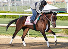 Black Type On the Line in Indiana Oaks