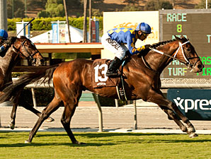 Unbridled's Note Takes Eddie D in Turf Debut