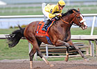 Union Rags Works Easy Five Furlongs