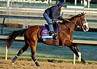 Union Rags Continues His Work