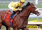 Union Rags, Others Work for Florida Derby