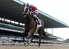 Untapable Cruises by Daylight in Mother Goose