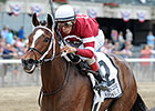 Featured Horse Profile: Untapable