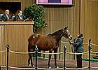 Up Brings $2.2M at Keeneland January