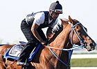 Uptowncharlybrown Headed to Belmont Stakes