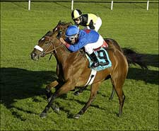 Vacare Stays Perfect With QE II Cup Upset