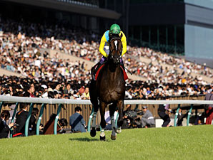 Japanese Horse of the Year Vodka Retired