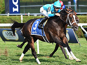 Wallyanna Lights Up Hall of Fame Stakes