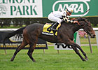 Juvenile Fillies Turf to Test Watsdachances