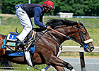 Wicked Strong works at Belmont Park