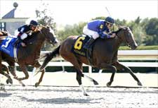 Wild Gams Rockets to Thoroughbred Club of America Win
