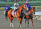 19 Nominated for Clark Handicap Nov. 29