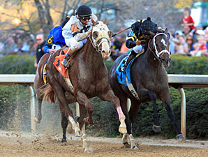 Will Take Charge Tops Lukas Exacta in Rebel