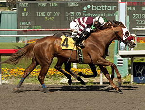 Bejarano Wins 5 to Steal Gold Rush Spotlight