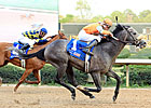 Oaklawn 'Cap: Win Willy Upsets Misremembered