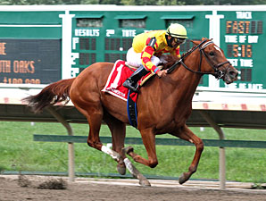 Wine Princess Matures in Monmouth Oaks