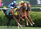 Wise Dan Passes Return Test in Flying Colors