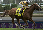 Wise Dan Makes History in Woodbine Mile Romp