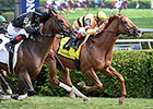 Wise Dan Victorious in Bernard Baruch Return