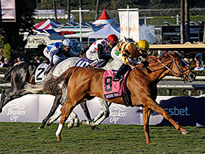 Wise Dan Appearance at Churchill Nov. 30