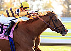 Wise Dan All Set for Upcoming Woodbine Mile