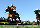 Wise Dan Handles Test in Fourstardave Repeat