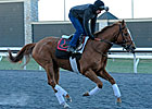 Wise Dan Tightens Screws in Keeneland Drill