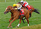 Wise Dan Faces Stiff Shadwell Turf Mile Test