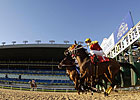Steady Wagering Increases at Woodbine in 2009