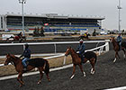 NTRA Safety Alliance Re-Accredits Woodbine