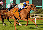 Highly-Regarded Zagora Tackles Gallorette