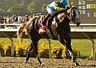 Favored Zensational Has No. 1 Post in Sprint