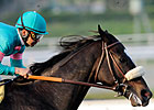 Zenyatta Reclaims Top Spot in Poll by a Nose