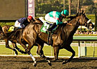 Perfect Zenyatta Repeats in 'Secret; BC Next