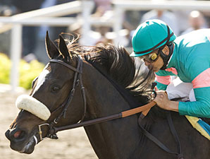 Zenyatta is a Perfect 10 After Milady Score