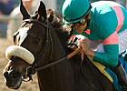 Zenyatta, Eskendereya Top First NTRA Polls
