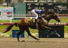 Del Mar Meet Kicks Off With Oceanside Stakes