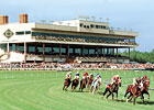 Colonial Downs Cancels Sunday Card