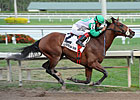Csaba Takes Harlan's Holiday for 3rd Straight